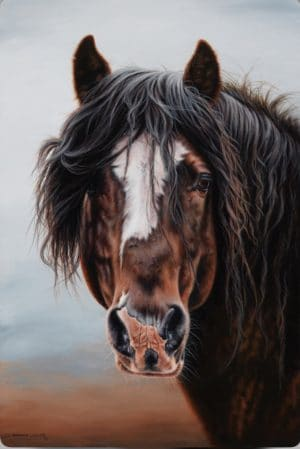 Old Violin Equine Art by Shannon Lawlor